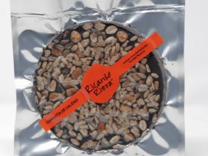 Torta de Chocolate 70% Músico Variado