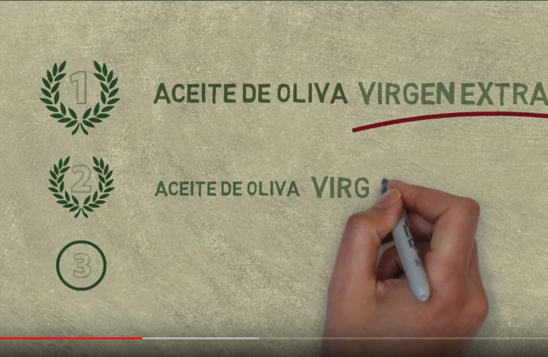 CÓMO DIFERENCIAR UN ACEITE DE OLIVA VIRGEN EXTRA