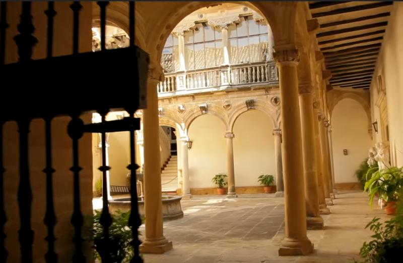 Producción de aceite de oliva virgen extra Castillo de Canena
